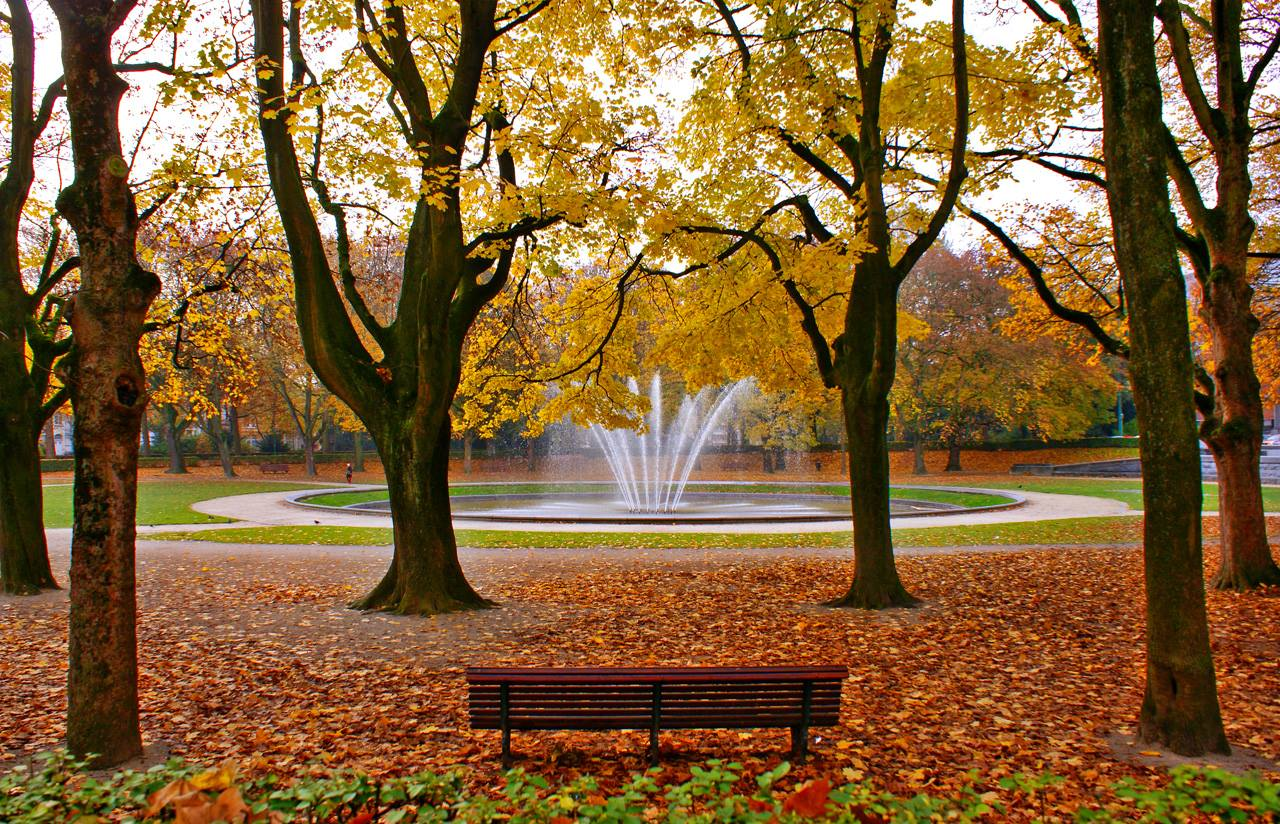 Cinquantenaire park in the fall